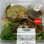 豆腐ハンバーグと彩りきんぴらのサラダ@セブンイレブン